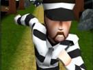 Hapishaneden Kaçış 3D