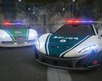 Dubai Polisleri