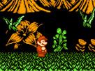 Mario 16 : Dinazorlar Devri