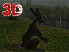 Online Vahşi Hayvanlar