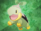 Pokemon: Renk patlatma