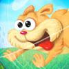 Koş Kedicik Koş